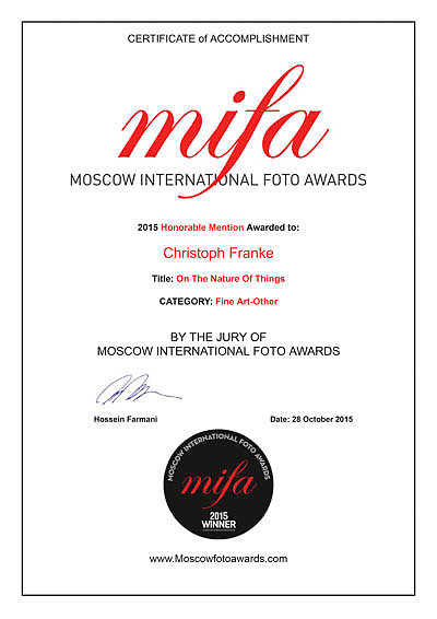 MIFA 2015 winners Certificate for Christoph Franke